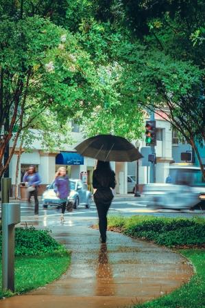 Rain in Sacramento