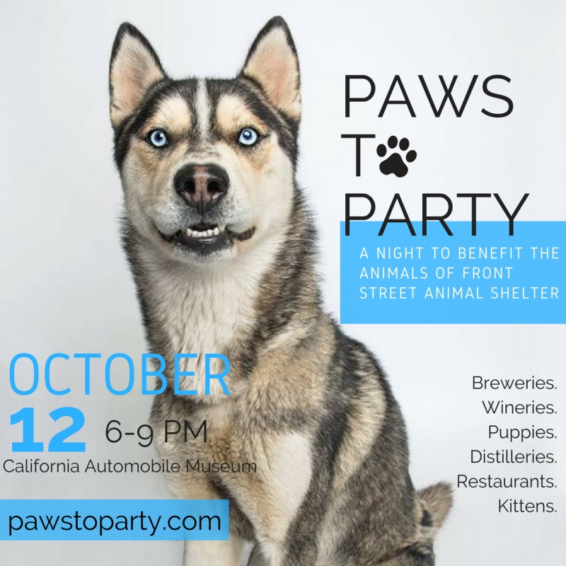 Paws to Party Instagram SG