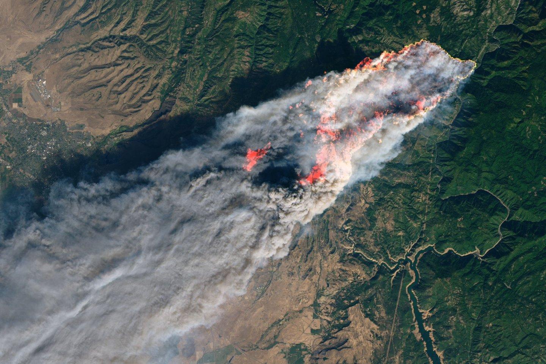 Image courtesy NASA Earth Observatory, earthobservatory.nasa.gov